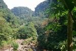 Dominica Natur