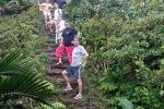 Dominica crew