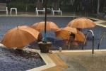 Monsun lässt grüßen