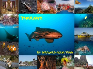 Collage Thailand